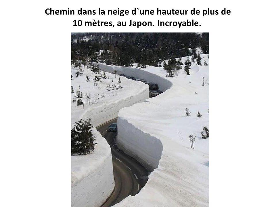 Chemin dans la neige d`une hauteur de plus de 10 mètres, au Japon