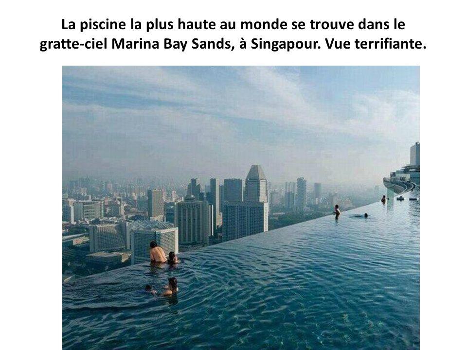 La piscine la plus haute au monde se trouve dans le gratte-ciel Marina Bay Sands, à Singapour.