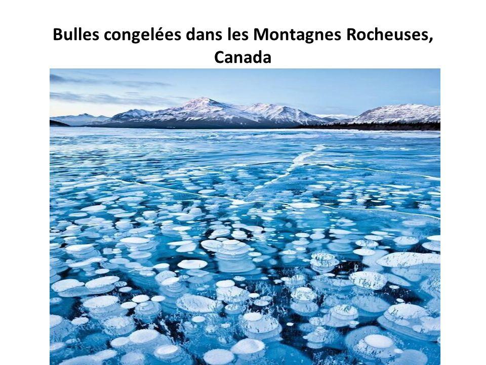 Bulles congelées dans les Montagnes Rocheuses, Canada