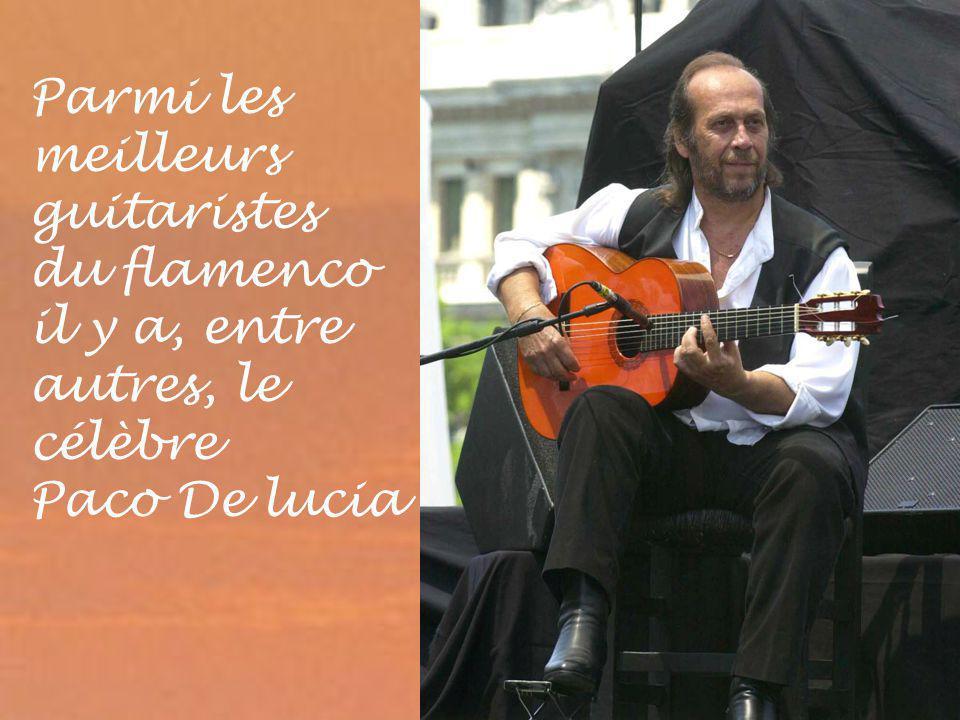 Parmi les meilleurs guitaristes du flamenco il y a, entre autres, le célèbre