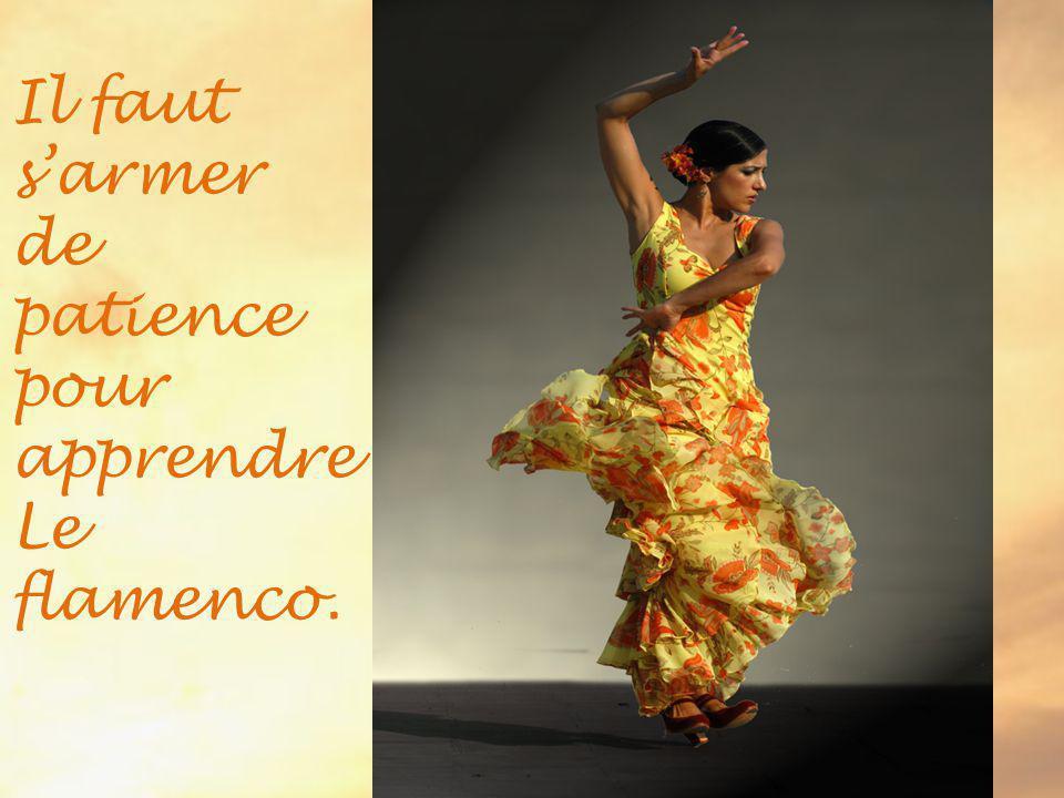 Il faut s'armer de patience pour apprendre Le flamenco.