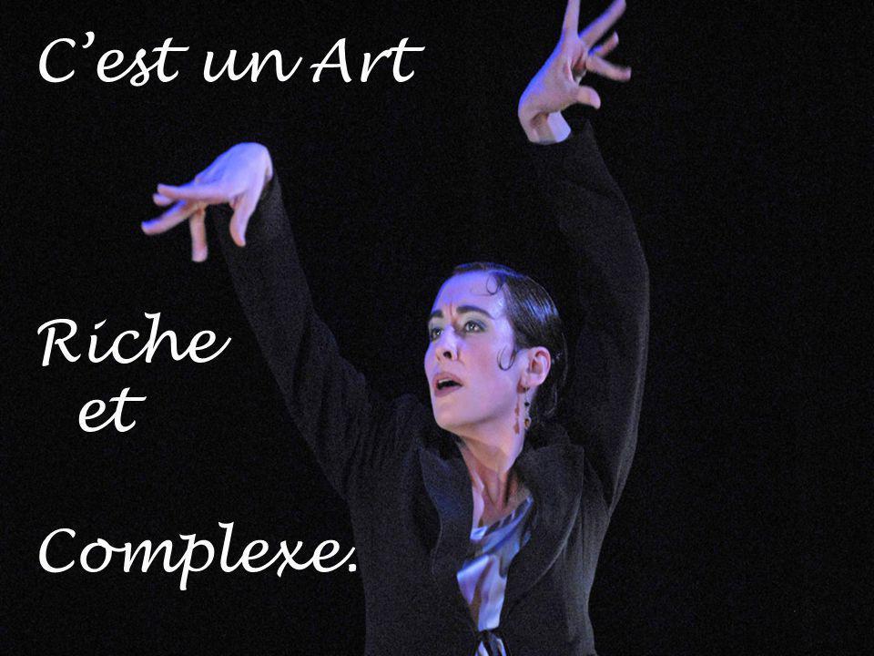 C'est un Art Riche et Complexe.