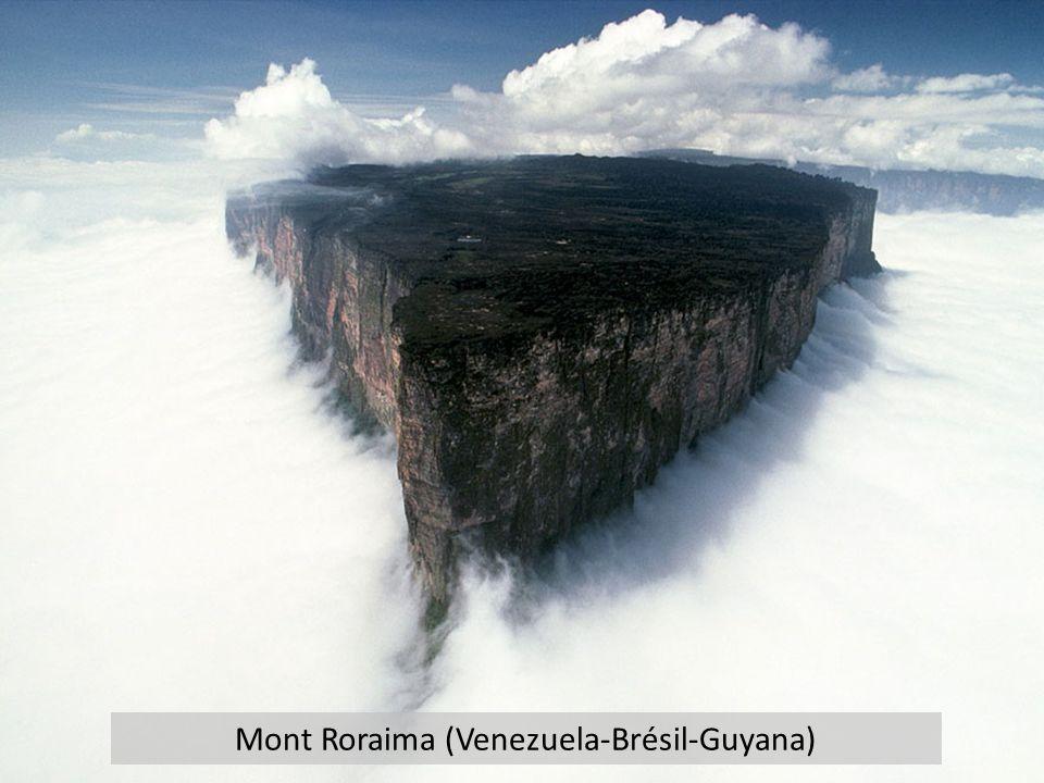 Mont Roraima (Venezuela-Brésil-Guyana)