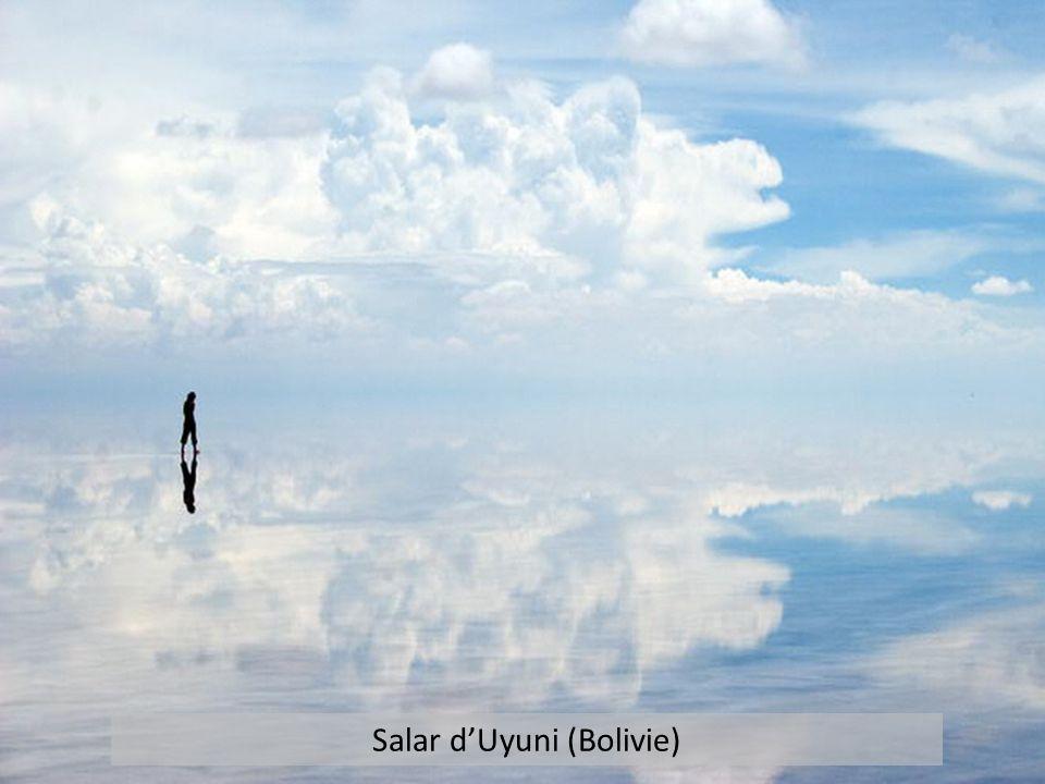 Salar d'Uyuni (Bolivie)