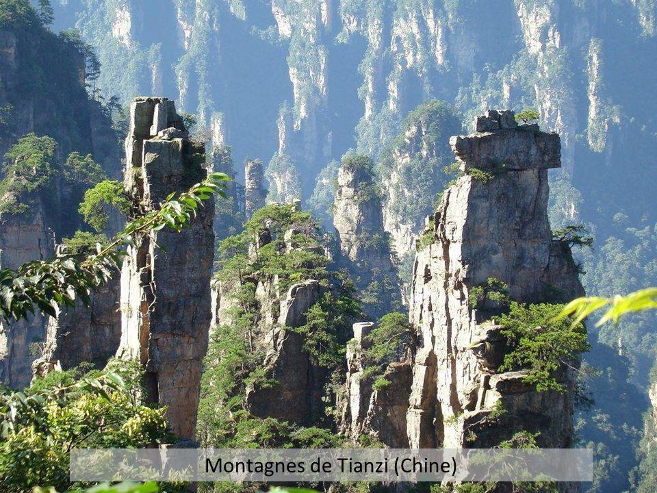 Montagnes de Tianzi (Chine)
