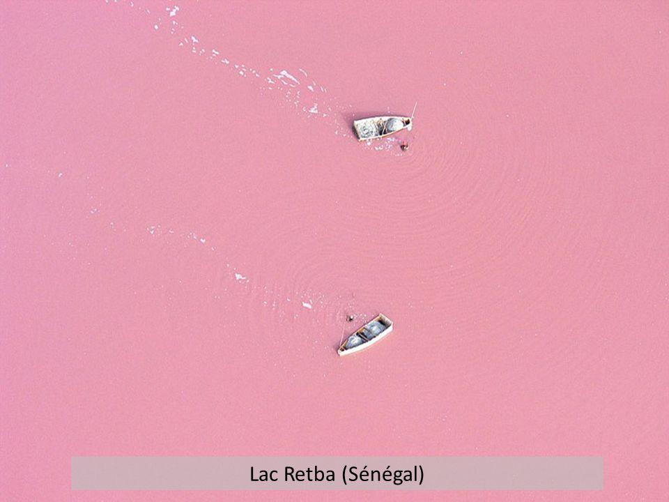 Lac Retba (Sénégal)