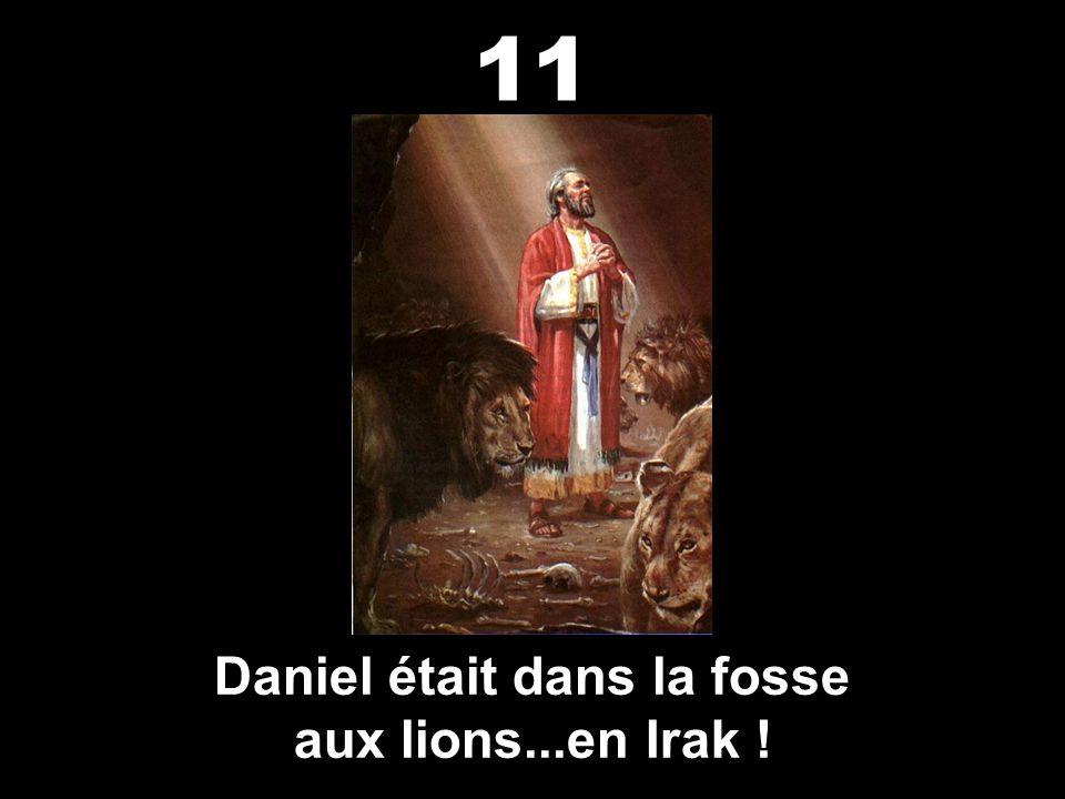 Daniel était dans la fosse