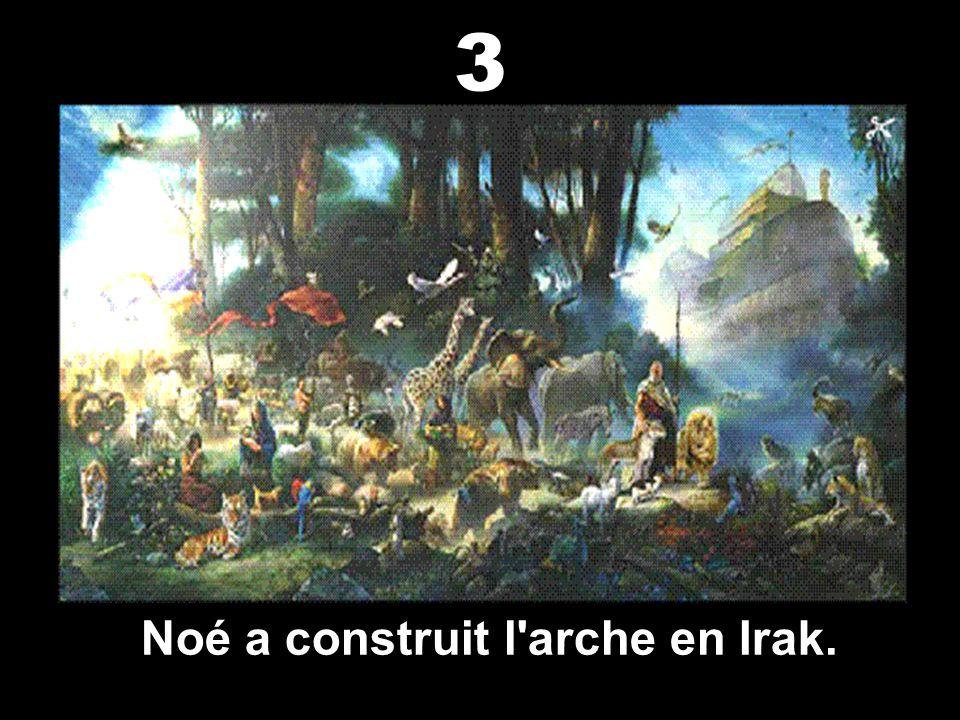 Noé a construit l arche en Irak.