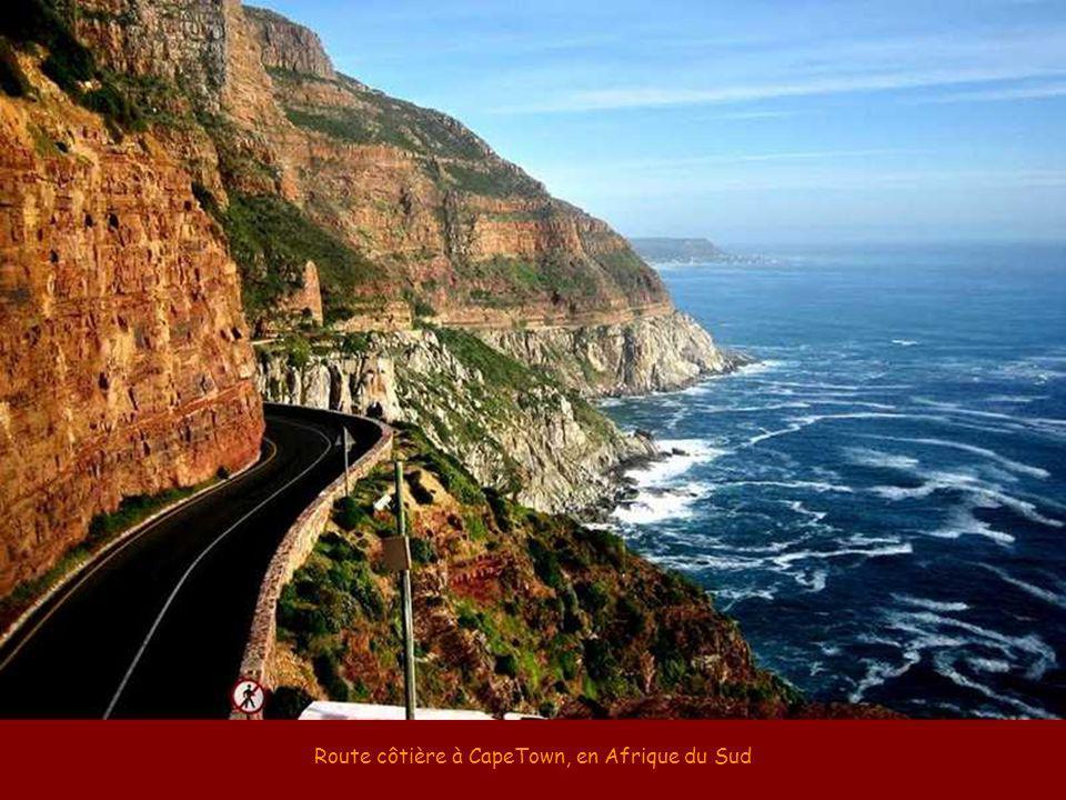 Route côtière à CapeTown, en Afrique du Sud
