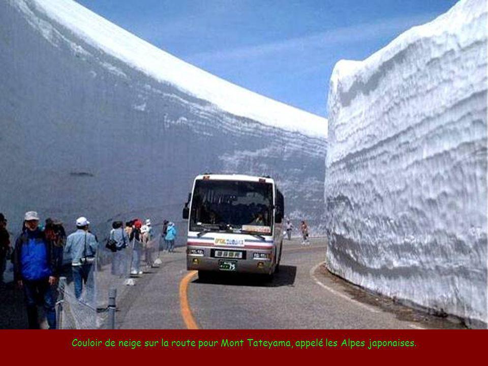 Couloir de neige sur la route pour Mont Tateyama, appelé les Alpes japonaises.
