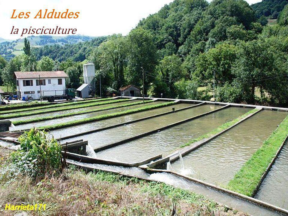 Les Aldudes la pisciculture