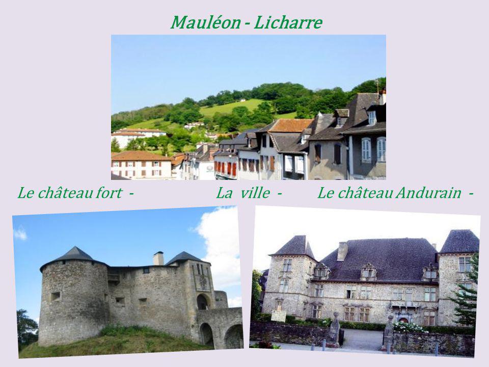 Mauléon - Licharre Le château fort - La ville - Le château Andurain -