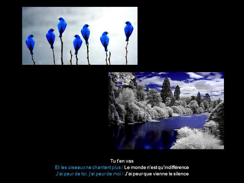 Et les oiseaux ne chantent plus / Le monde n est qu indifférence