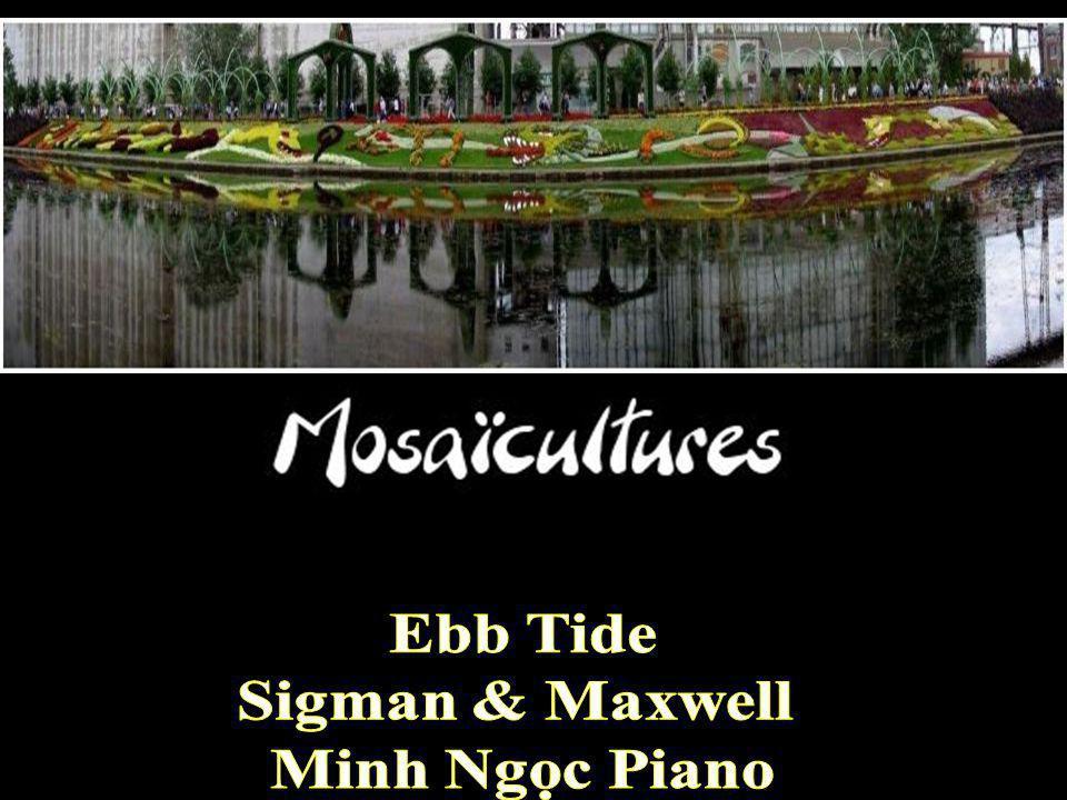 Ebb Tide Sigman & Maxwell Minh Ngọc Piano
