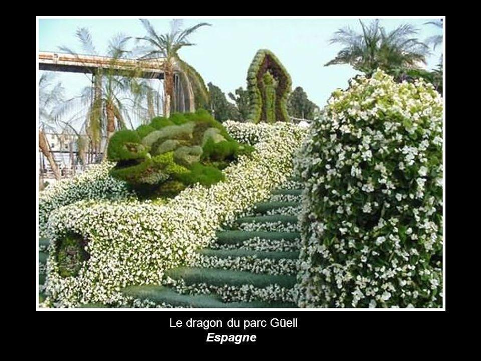Le dragon du parc Güell Espagne
