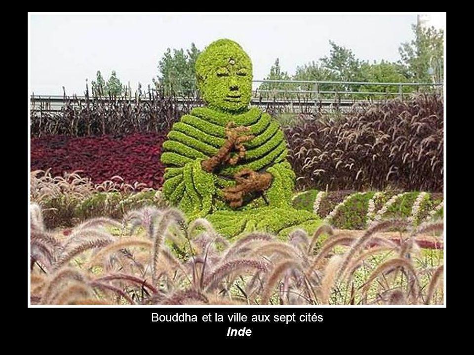 Bouddha et la ville aux sept cités
