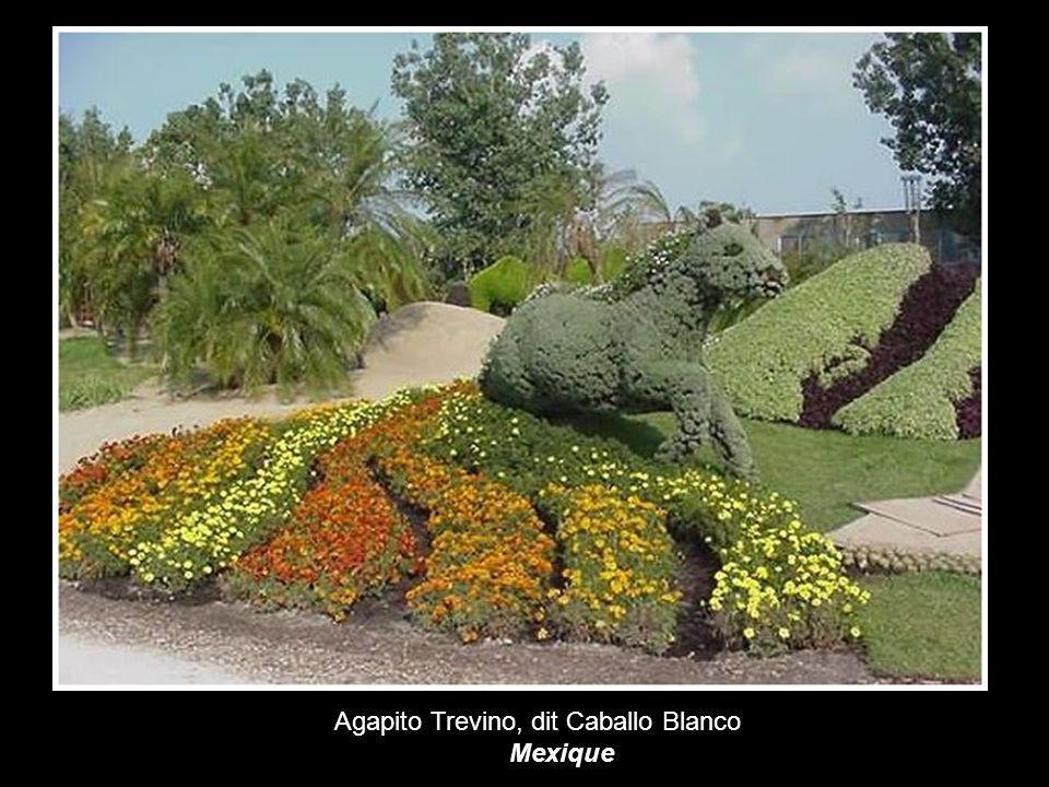Agapito Trevino, dit Caballo Blanco
