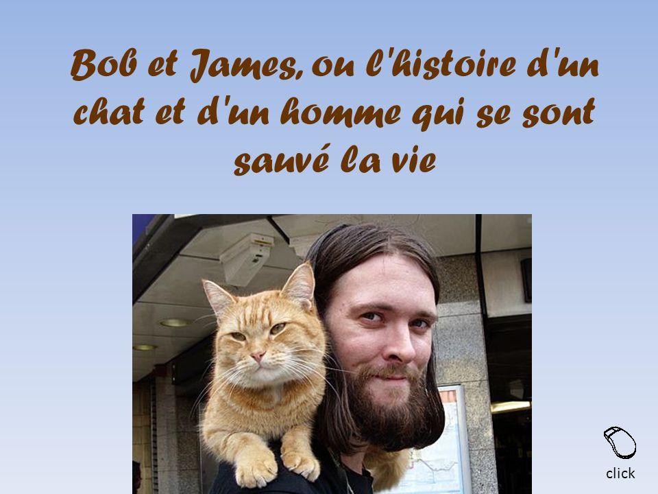 Bob et James, ou l histoire d un chat et d un homme qui se sont sauvé la vie