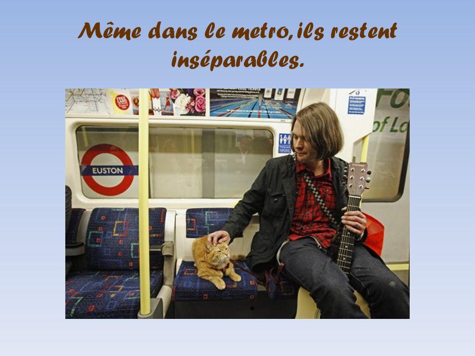 Même dans le metro, ils restent inséparables.