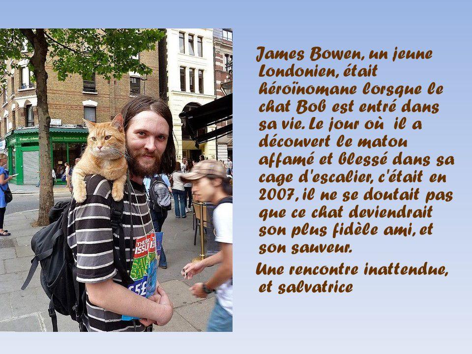 James Bowen, un jeune Londonien, était héroïnomane lorsque le chat Bob est entré dans sa vie. Le jour où il a découvert le matou affamé et blessé dans sa cage d escalier, c était en 2007, il ne se doutait pas que ce chat deviendrait son plus fidèle ami, et son sauveur.
