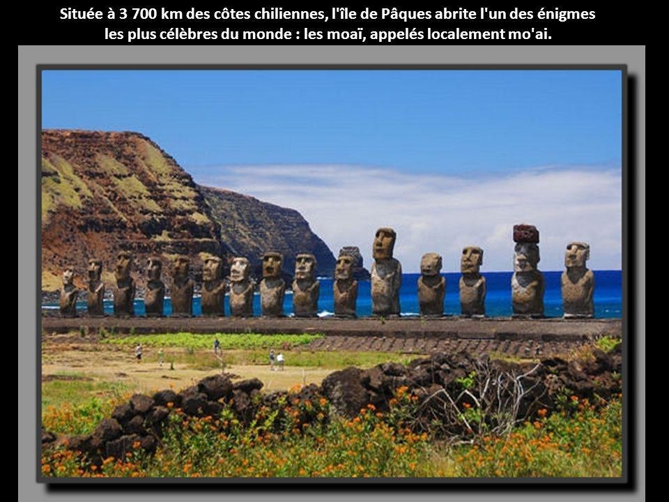les plus célèbres du monde : les moaï, appelés localement mo ai.