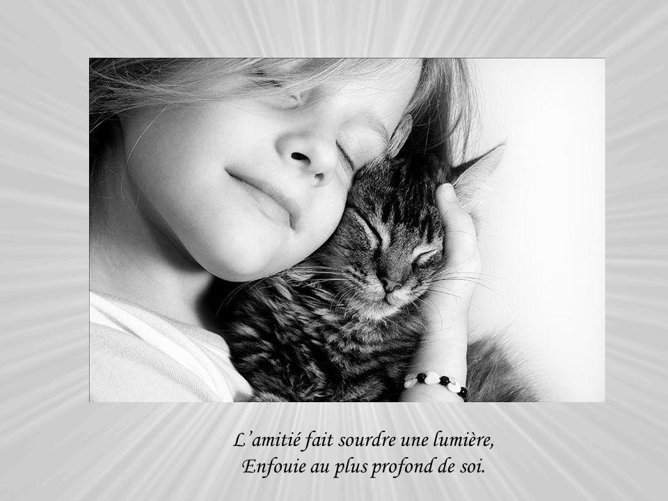 L'amitié fait sourdre une lumière, Enfouie au plus profond de soi.