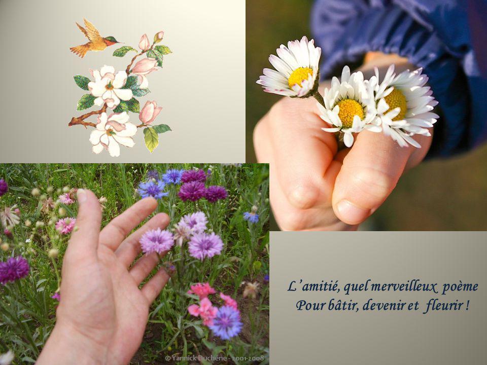 Pour bâtir, devenir et fleurir !