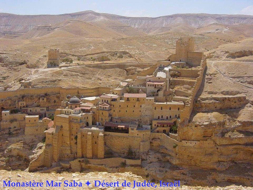 Monastère Mar Saba  Désert de Judée, Israël