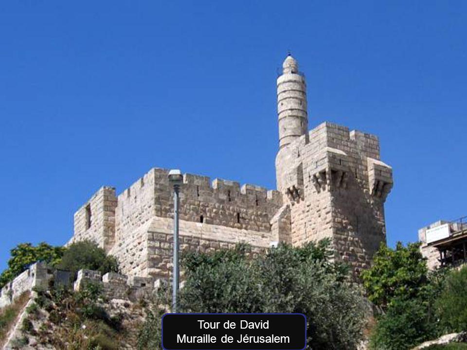 Tour de David Muraille de Jérusalem