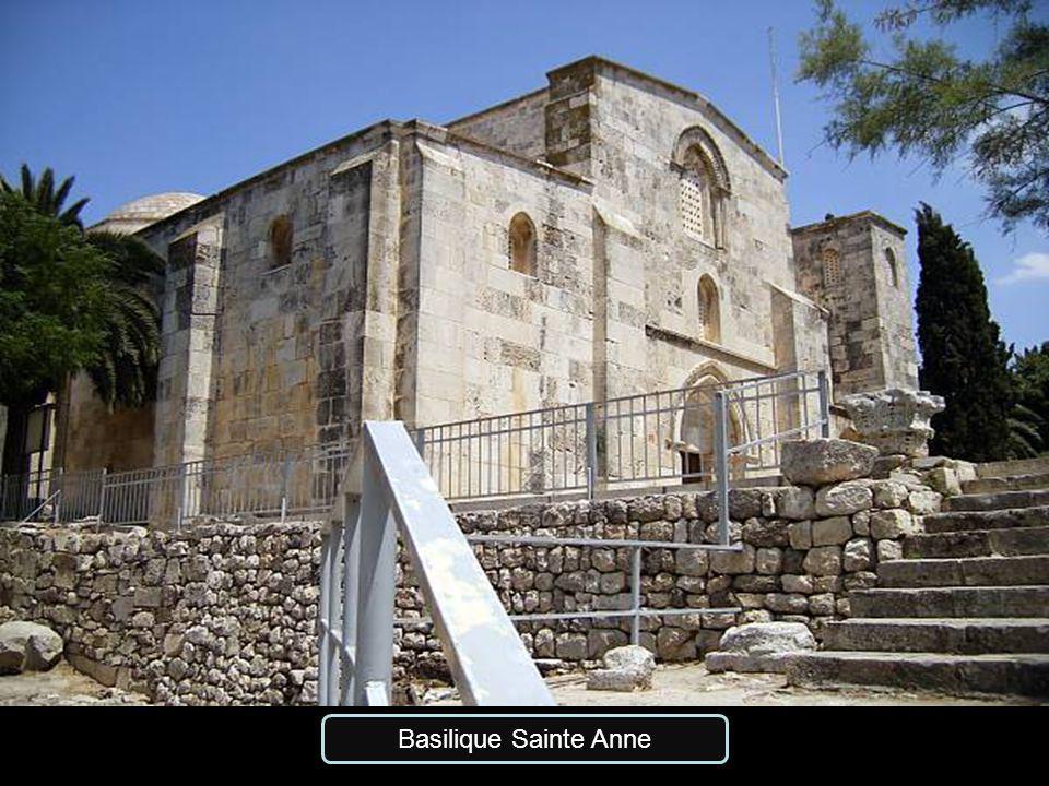 Basilique Sainte Anne