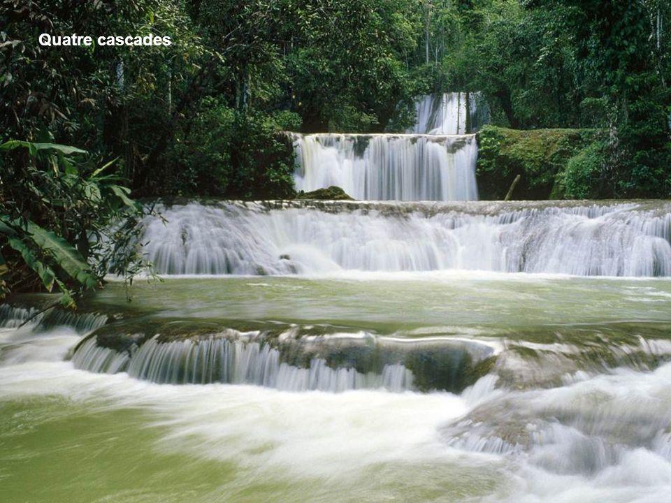 Quatre cascades