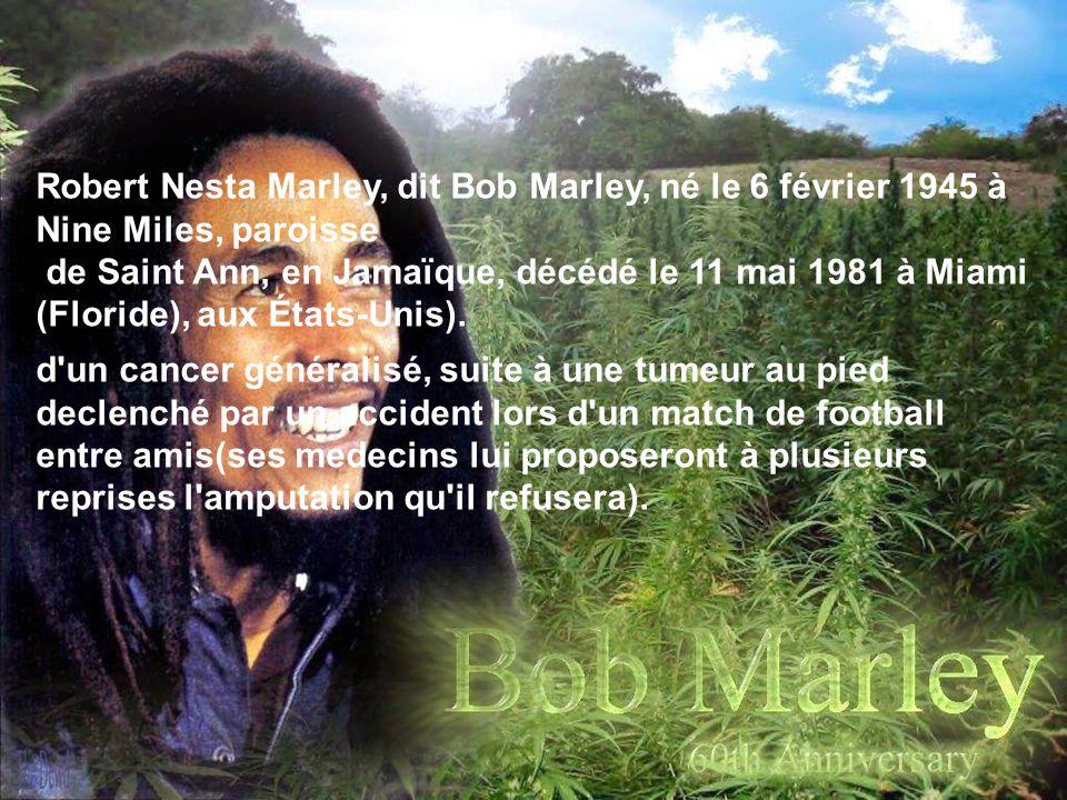 Robert Nesta Marley, dit Bob Marley, né le 6 février 1945 à Nine Miles, paroisse