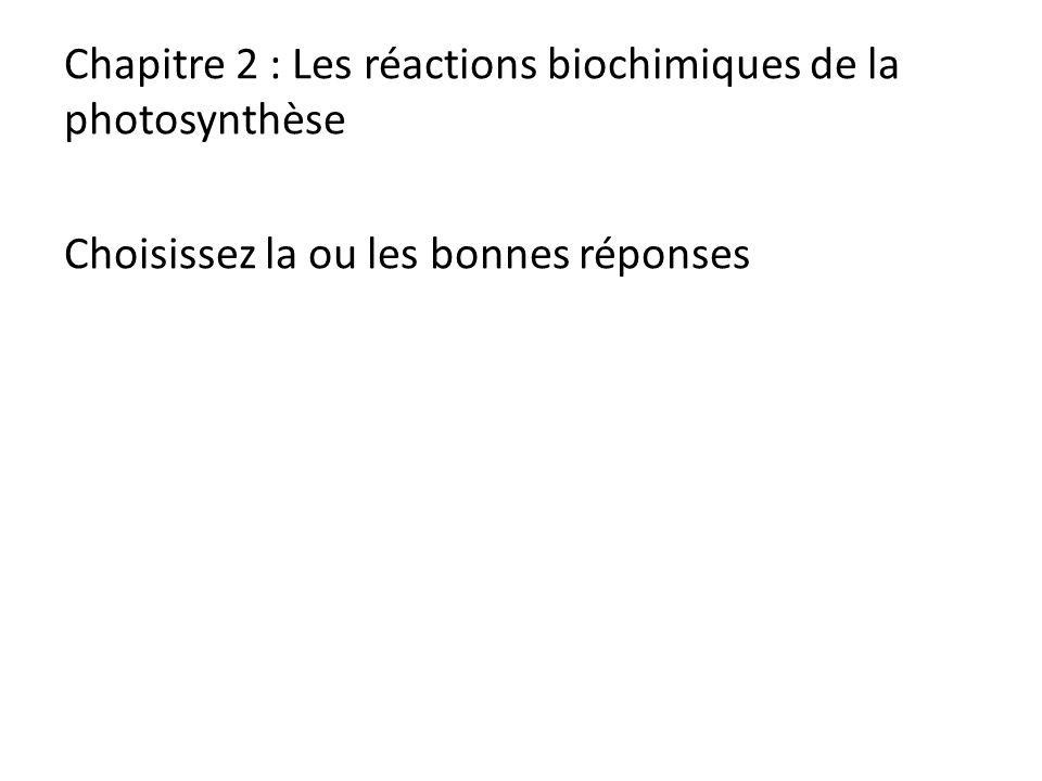Chapitre 2 : Les réactions biochimiques de la photosynthèse Choisissez la ou les bonnes réponses