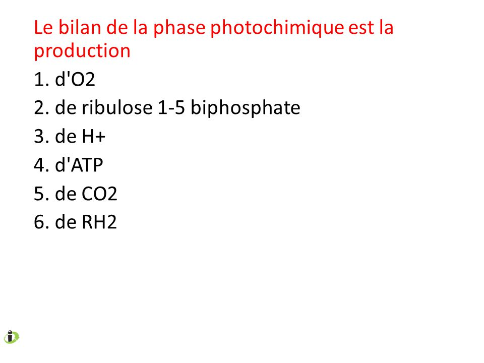 Le bilan de la phase photochimique est la production