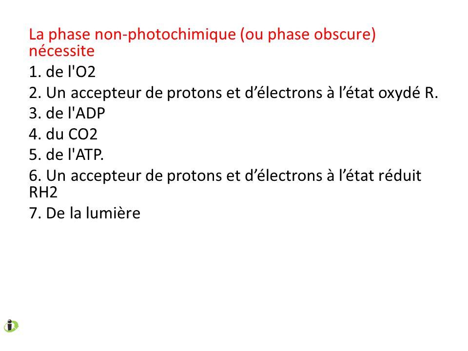 La phase non-photochimique (ou phase obscure) nécessite