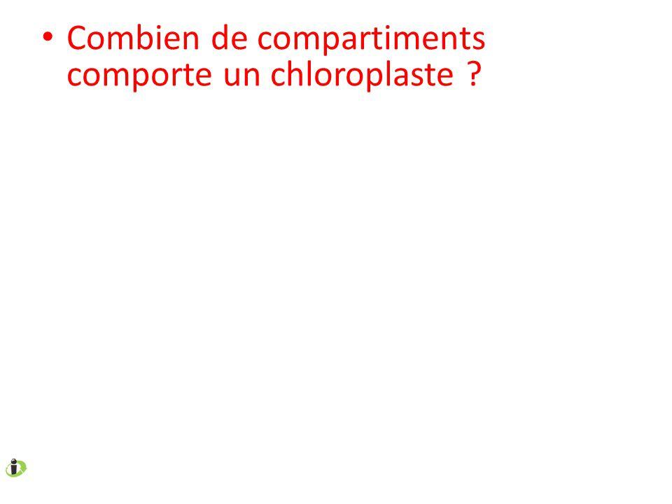 Combien de compartiments comporte un chloroplaste