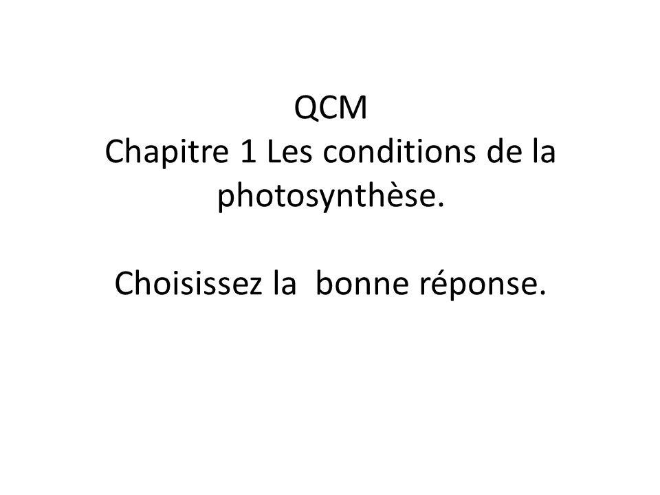 QCM Chapitre 1 Les conditions de la photosynthèse