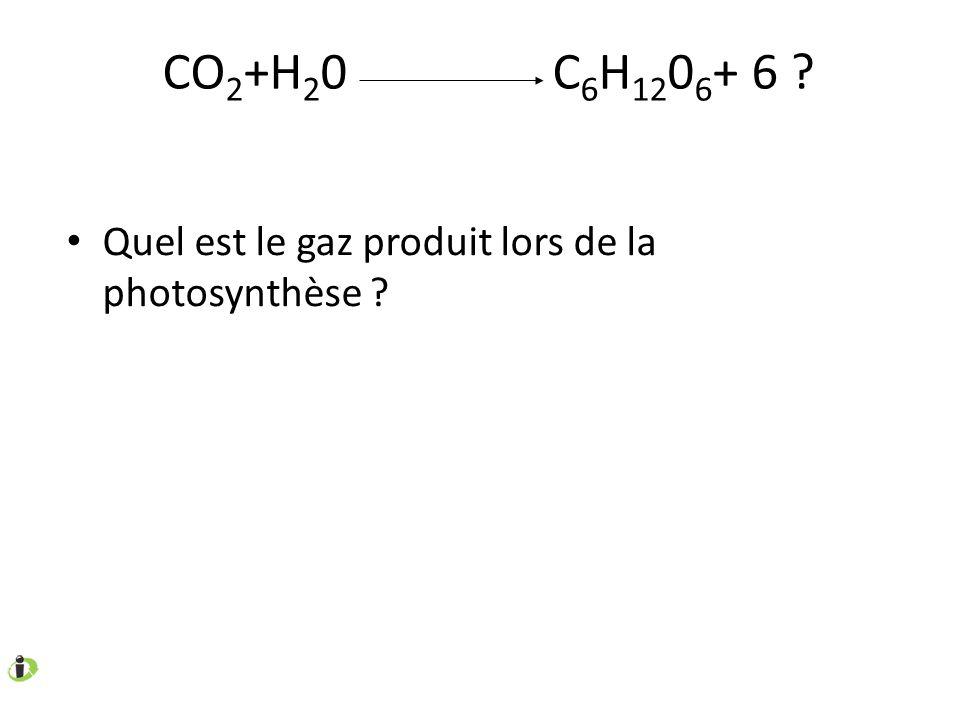 CO2+H20 C6H1206+ 6 Quel est le gaz produit lors de la photosynthèse