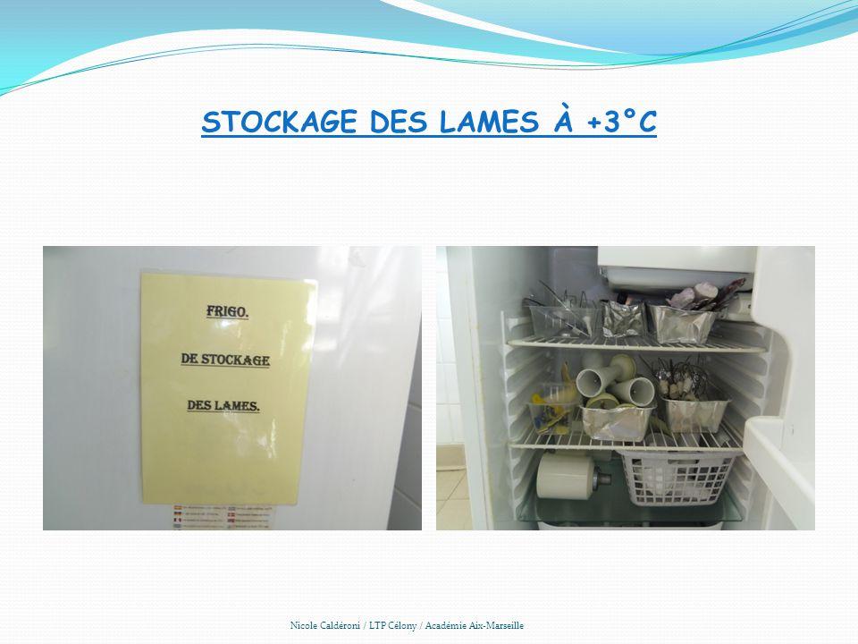 Stockage des lames à +3°C