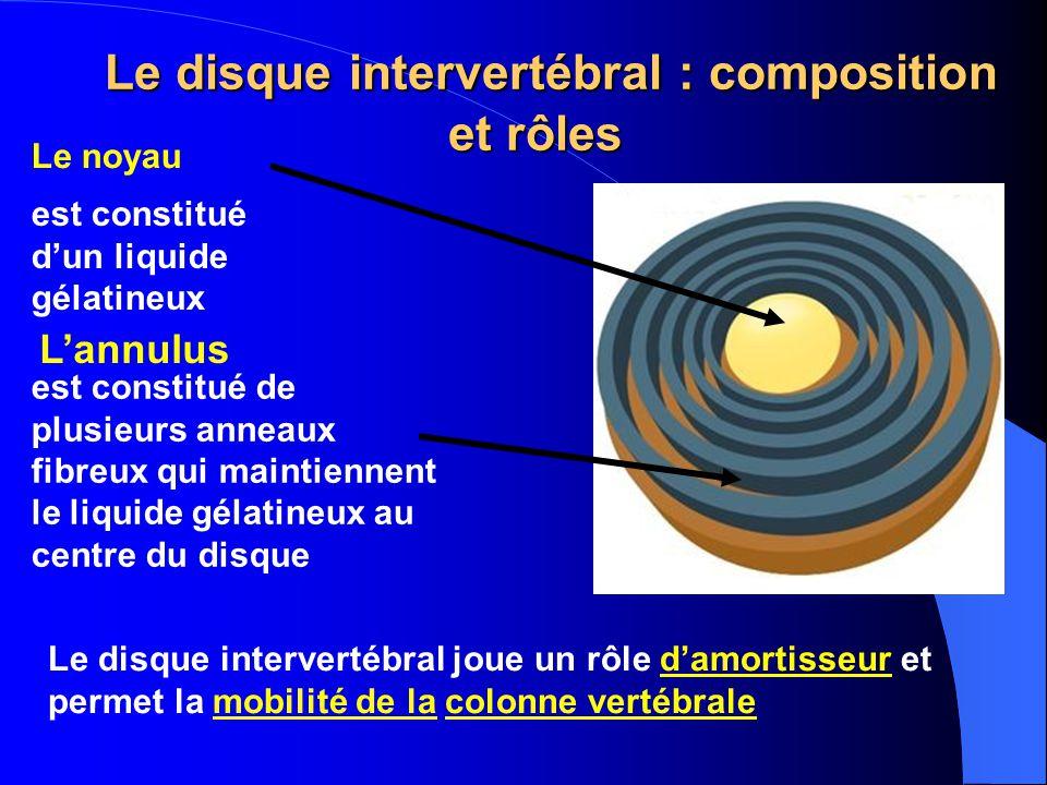 Le disque intervertébral : composition et rôles