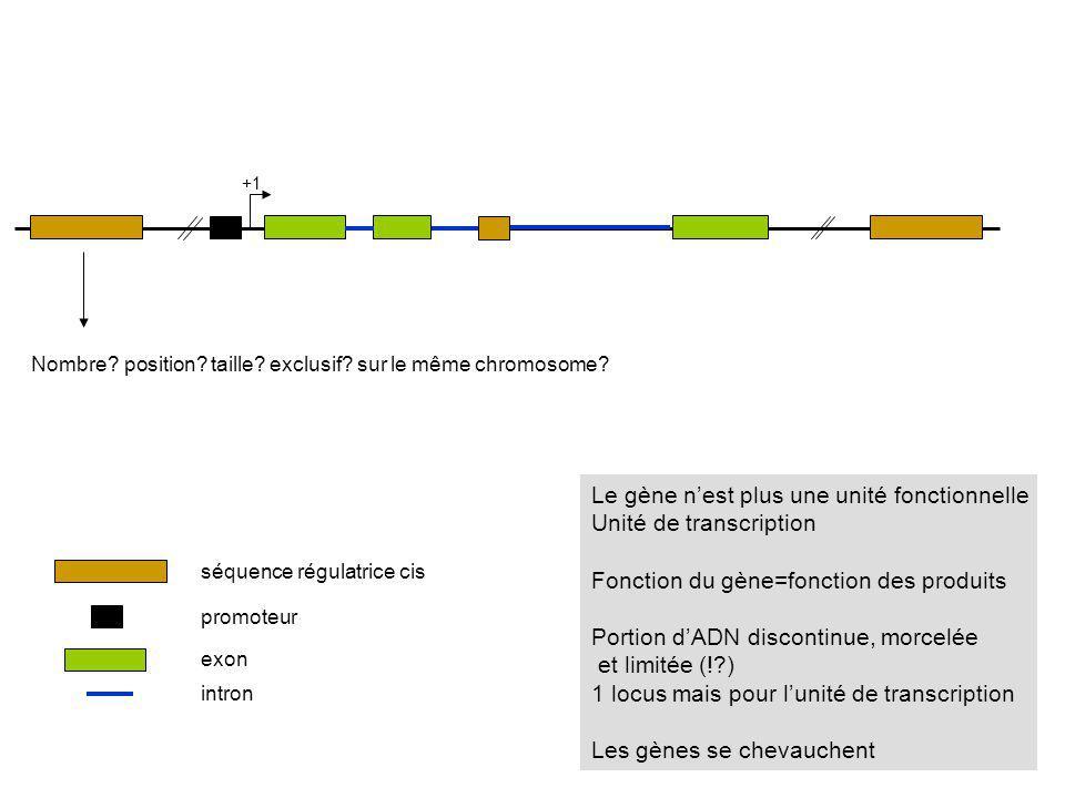 Le gène n'est plus une unité fonctionnelle Unité de transcription