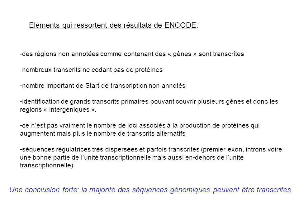Eléments qui ressortent des résultats de ENCODE: