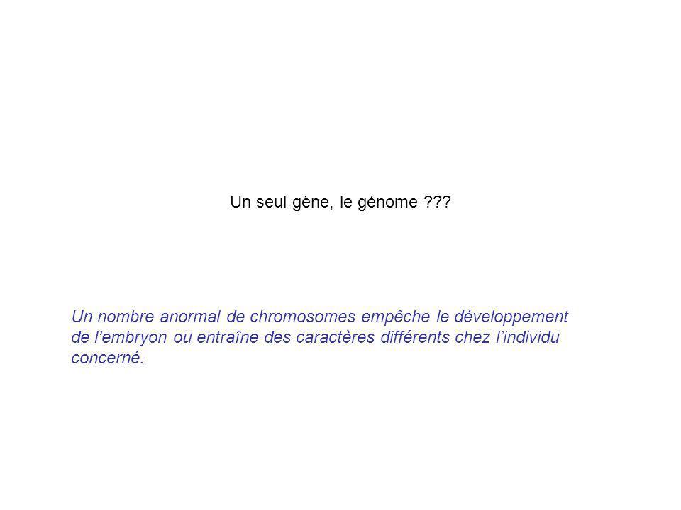 Un seul gène, le génome