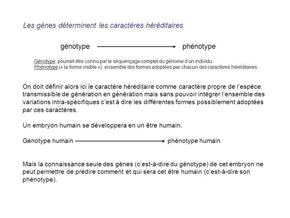 Les gènes déterminent les caractères héréditaires