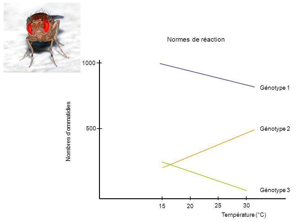 Normes de réaction 1000 Génotype 1 500 Génotype 2 Nombres d'ommatidies
