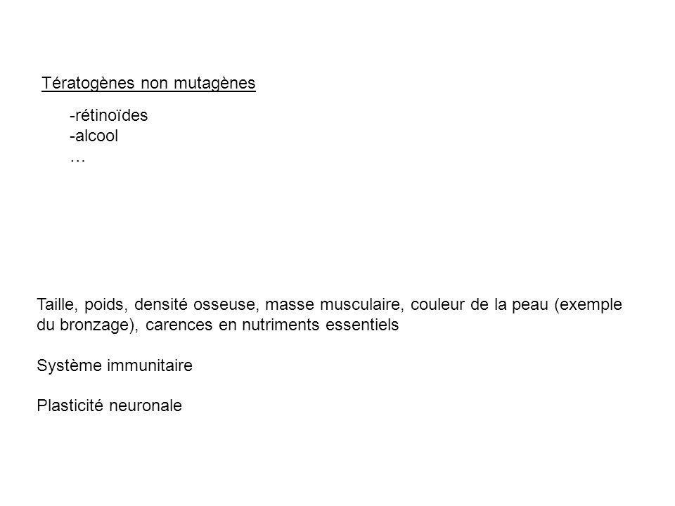 Tératogènes non mutagènes