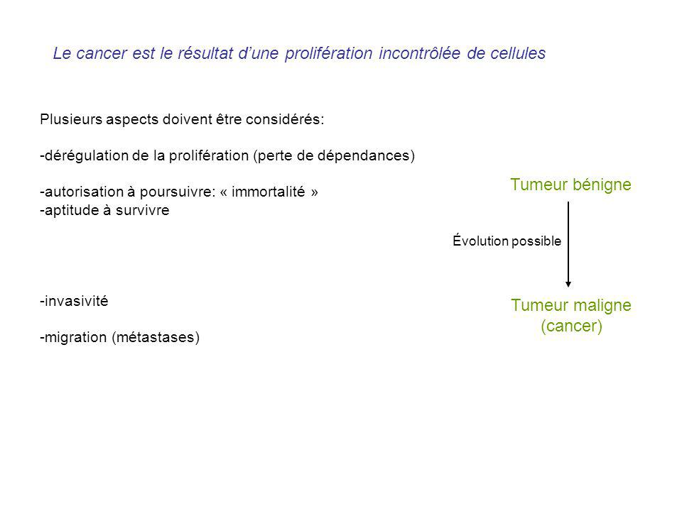 Le cancer est le résultat d'une prolifération incontrôlée de cellules