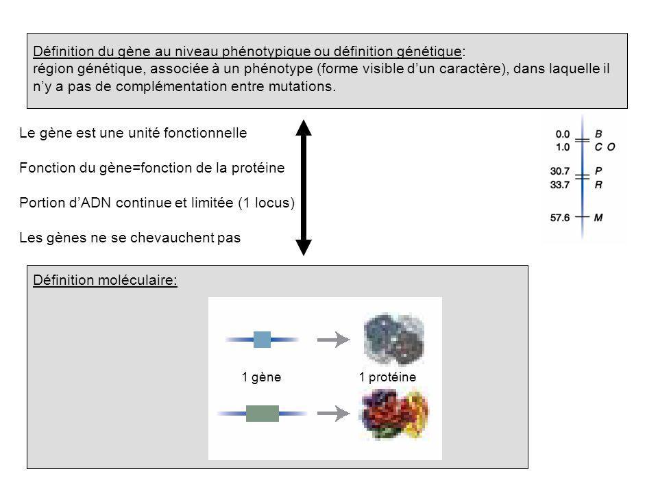 Définition du gène au niveau phénotypique ou définition génétique: