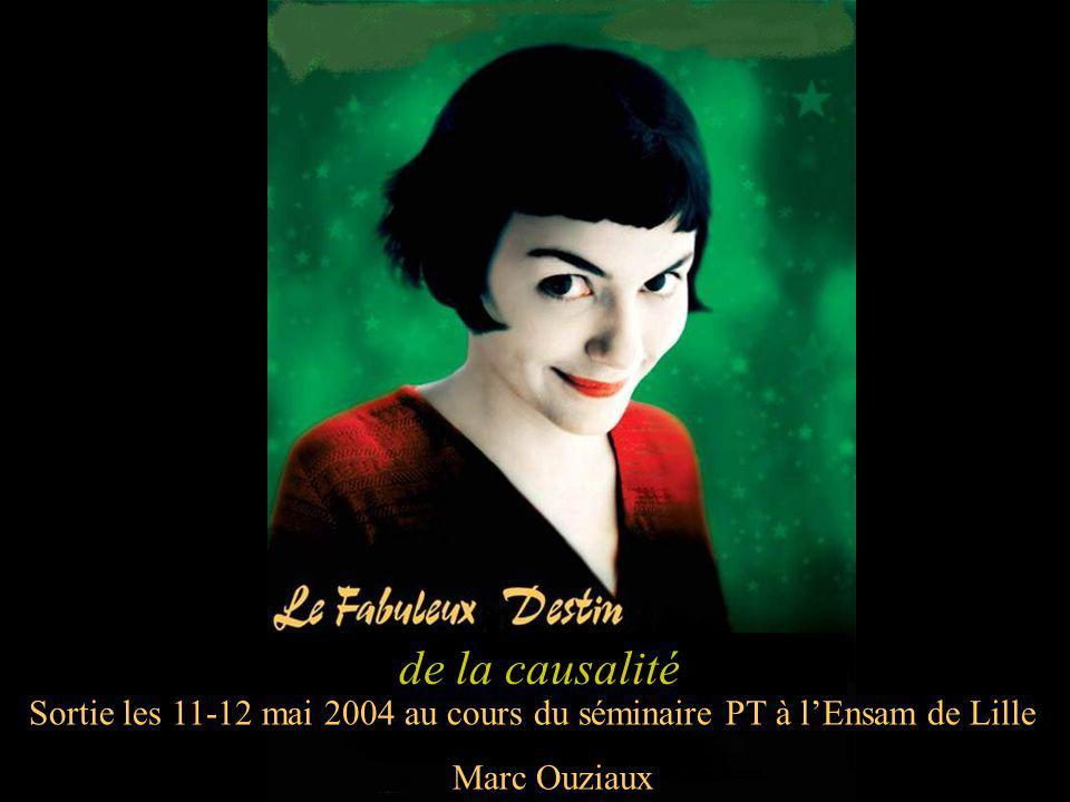 de la causalité Sortie les 11-12 mai 2004 au cours du séminaire PT à l'Ensam de Lille Marc Ouziaux