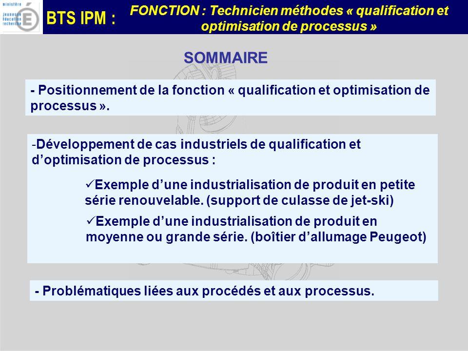 SOMMAIRE - Positionnement de la fonction « qualification et optimisation de processus ».